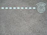 PWOC Badge Pic 3