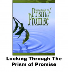 Looking through the Prism Of Promise