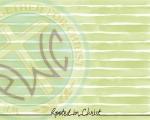 Greenstripe_logo_lettering