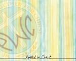 Vericlestripe_logo_lettering