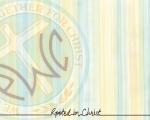 Vericlestripe_logo_letteringless